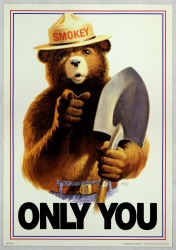 Uncle_Sam_style_Smokey_Bear_Only_You-1.jpg